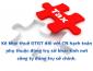 Kê khai thuế GTGT đối với chi nhánh hạch toán phụ thuộc đóng trụ sở khác tỉnh nơi công ty đóng trụ sở chính