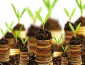 Những khoản thu nhập nào không được hưởng ưu đãi thuế theo địa bàn?