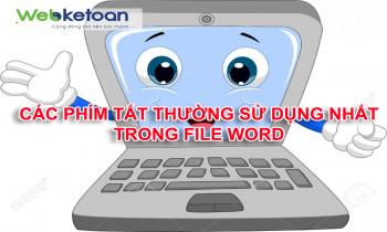 Những phím tắt thường sử dụng trong Word