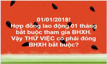 Thử việc có phải đóng BHXH bắt buộc từ năm 2018?