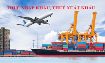 Chính sách thuế xuất, nhập khẩu áp dụng từ tháng 04/2021